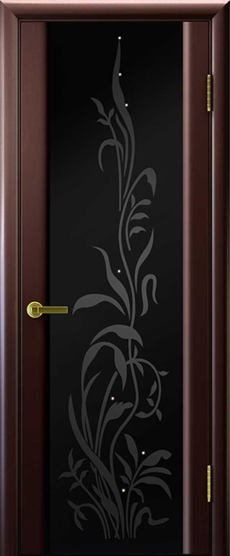 двери Эксклюзив-2 Венге